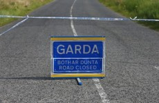 Man (20s) dies in Kilkenny road crash overnight
