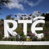 RTÉ putting five paintings up for auction in a bid to boost funds
