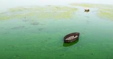 The week in photos: Waterworld