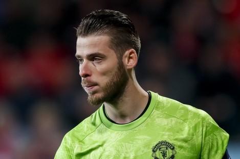 Man United shot-stopper David de Gea.