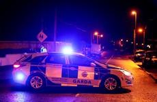 Gardaí bitten and kicked during violent arrest in Waterford