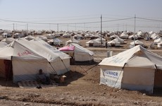 Families of Islamic State supporters escape Syria displacement camp, officials say