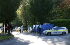 Man (30s) dead and two men arrested after stabbing in Co Dublin