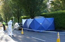 Two men arrested over fatal stabbing in Loughlinstown released without charge