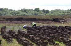Bord na Móna announces plan to redeploy 200 workers