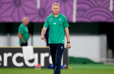 Schmidt: 'This year hasn't been great, but Ireland are in a really good place'