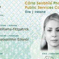 Senior civil servant said media outlets had 'agenda' against the Public Services Card