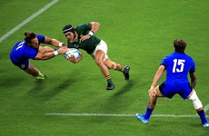 Kolbe fit for final but Rassie Erasmus insists Springboks won't change tactics