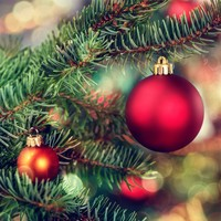 Poll: When are you taking down your Christmas tree?