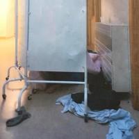 Patients sleeping on floor of Waterford psychiatric unit described as 'shocking'