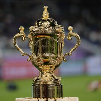 Poll: Will you watch the Rugby World Cup final?