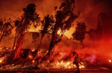 New California fire grows as crews make headway on other blazes