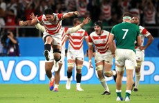 Farrell's Ireland to host Japan, Springboks and Wallabies in November 2020