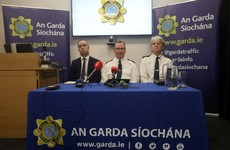 'Unprecedented' and 'innovative': Senior gardaí praise huge commitment given during Ana Kriegel investigation