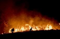 Three dead and hundreds of homes destroyed in Australia as 'ferocious fires' continue to burn