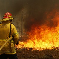 Sydney is facing a 'catastrophic' threat as Australia battles worst bushfires in a decade