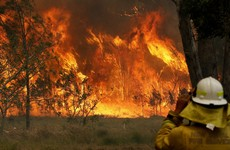 State of emergency declared in Sydney over threat of 'catastrophic' bushfires