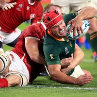Happy Springbok hooker retires again