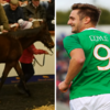 Kevin Doyle's €155,000 purchase of Altior's half-brother has grabbed headlines