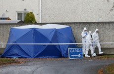 Gardaí identify victim of Lucan murder as suspected Kinahan hitman Wayne Whelan
