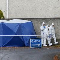 Gardaí identify victim of Lucan murder as suspected Kinahan hitman Wayne Whelan