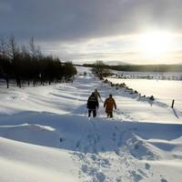 Quiz: How well do you know Irish winters?