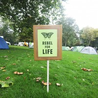 Extinction Rebellion: Parks chief was worried removal of Merrion Square camp would look 'aggressive'