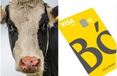 Royal Bank of Scotland has called its new app Bó