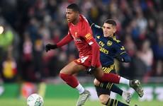 Liverpool striker not guaranteed matches at Palace, warns Hodgson