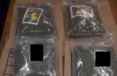 €100,000 of suspected cannabis seized by gardaí in Roscommon