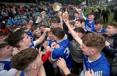 Here are the 2020 Dr Harty Cup and Corn Ui Mhuirí quarter-final draws in Munster