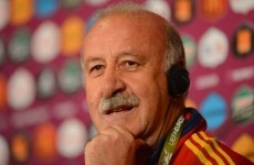 Yellow cards no problem for Del Bosque