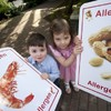 'Incorrect and inconsistent': Food businesses criticised over allergen controls