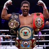 Joshua welcomes unification clash with Wilder and trilogy bout against Ruiz