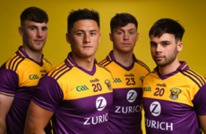 What do you think of Wexford GAA's new jersey for 2020?