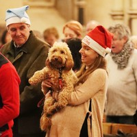 Canine carollers pack Christ Church Cathedral for annual mass