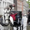 Legal limbo to end for Dublin's horse-drawn carriage drivers as new law to sort out licence debacle