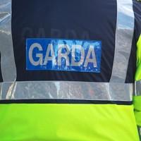 Retired garda arrested over immigration irregularities at garda station