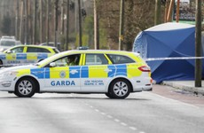 Gardaí ruled out terrorism links in 'random' Dundalk killing, court hears