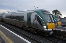 Horse dies after being struck by rush hour train in south Dublin