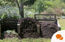 From the Garden: Get over your squeamishness - manure is gold dust for your veg patch