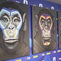 Serie A monkey artist apologises