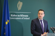 Taoiseach says he'll meet Micheál Martin for new year talks about keeping this government going