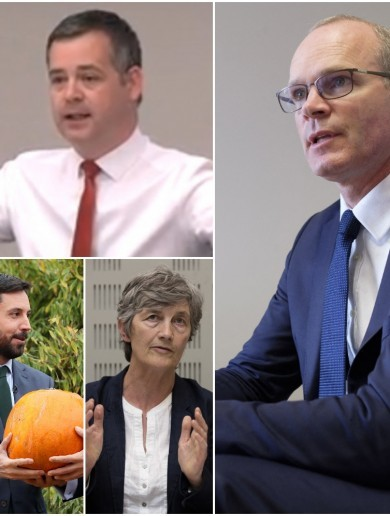 These are the winners and losers from the Irish political year