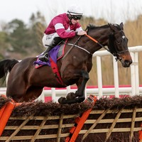 Elliott lost for words after Apple's Jade turns back the clock at Leopardstown