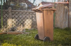 Mandatory brown bin collections could be introduced under new waste strategy