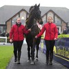 2017 Gold Cup hero Sizing John falls on his long-awaited return at Punchestown