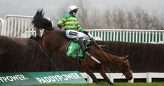 Champ crashes out with Dipper Novices' Chase at his mercy