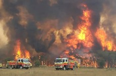 New South Wales declares state of emergency as Australia fire threat escalates