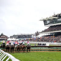 Johnny Ward: Cheltenham should be careful what it wishes for with five-day debate